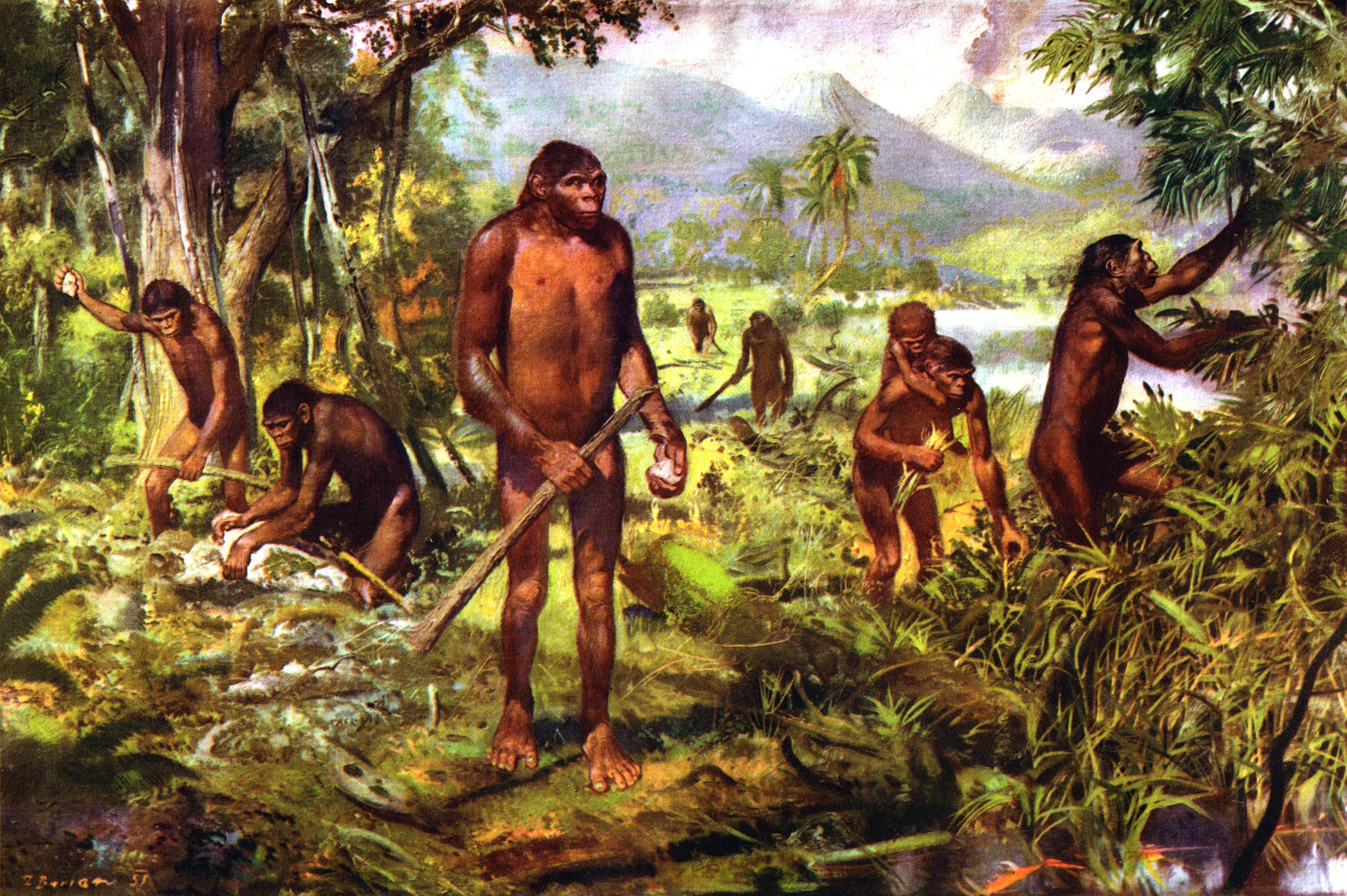 Смотреть фильмы онлайн бесплатно ебля доисторических людей